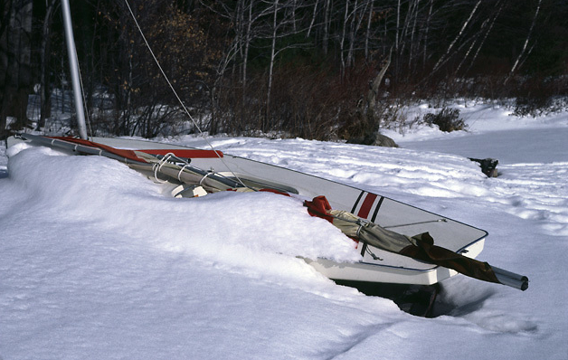 sunfish-snow